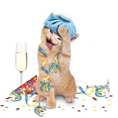 party vorbeugung